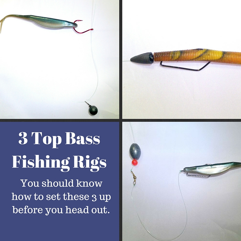 3 top bass fishing rigs to catch you the most bass for Best fishing line for bass