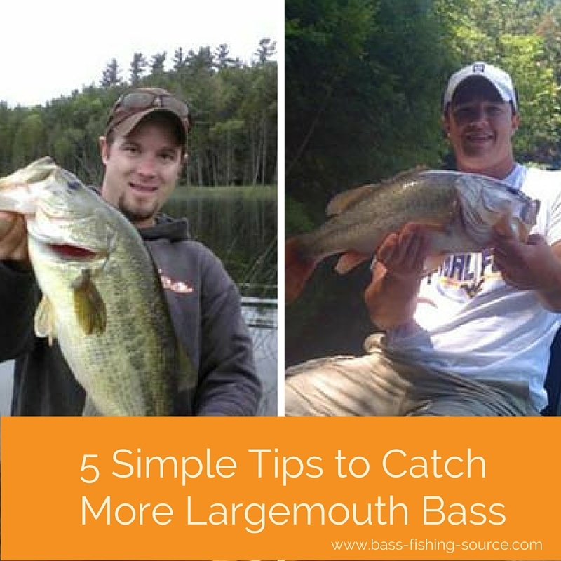 Tips for catching bass