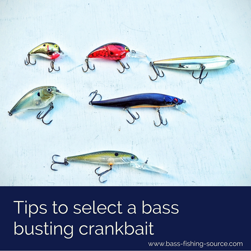 Crankbaits for bass