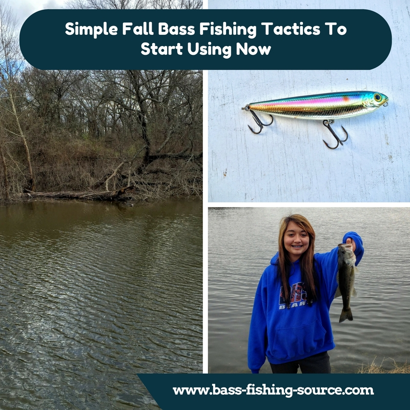 Simple Fall Bass Fishing Tactics to Start Using Now