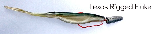Texas Rigged Fluke