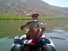 Catching Huge Bass