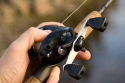 bass fishing reels - which one is right for you?, Fishing Reels