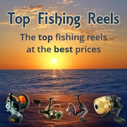 Top Fishing Reels