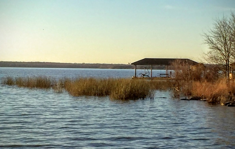 Backs of creeks and weedlines for fall largemouth bass